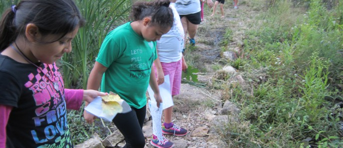 Girl Scouts exploring the Rozarks nature trail