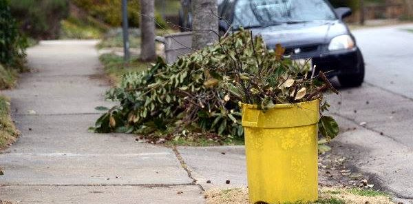 From the UG: Storm debris pick up deadline is July 7
